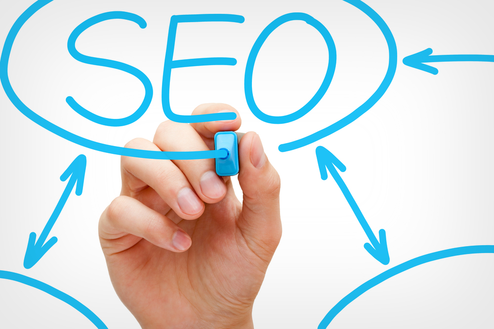 Need SEO Services